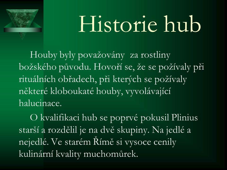 Historie hub Houby byly považovány za rostliny božského původu.