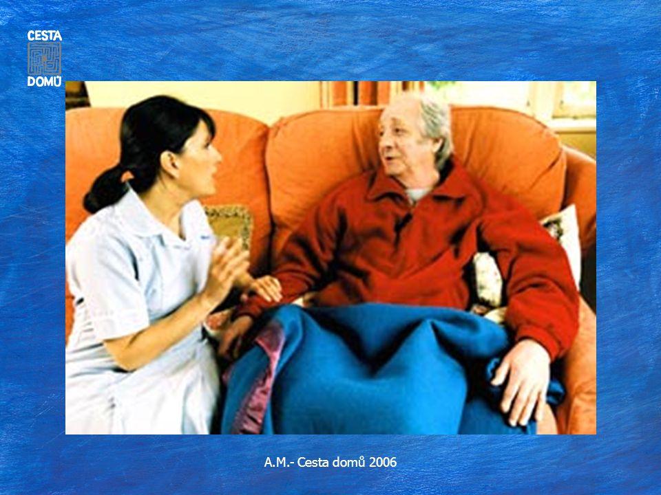 A.M.- Cesta domů 2006