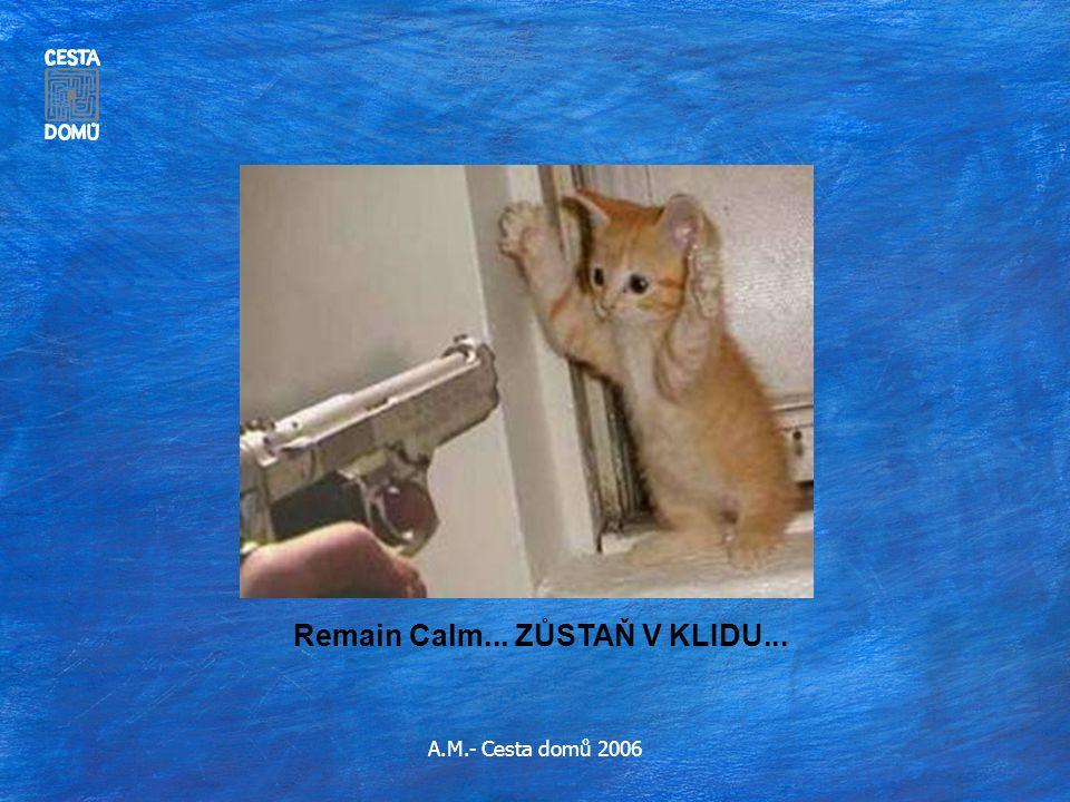 A.M.- Cesta domů 2006 Remain Calm... ZŮSTAŇ V KLIDU...