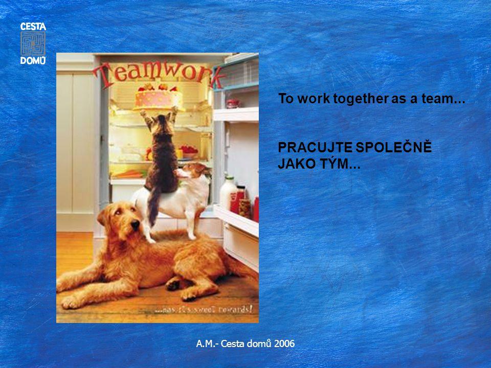 A.M.- Cesta domů 2006 To work together as a team... PRACUJTE SPOLEČNĚ JAKO TÝM...