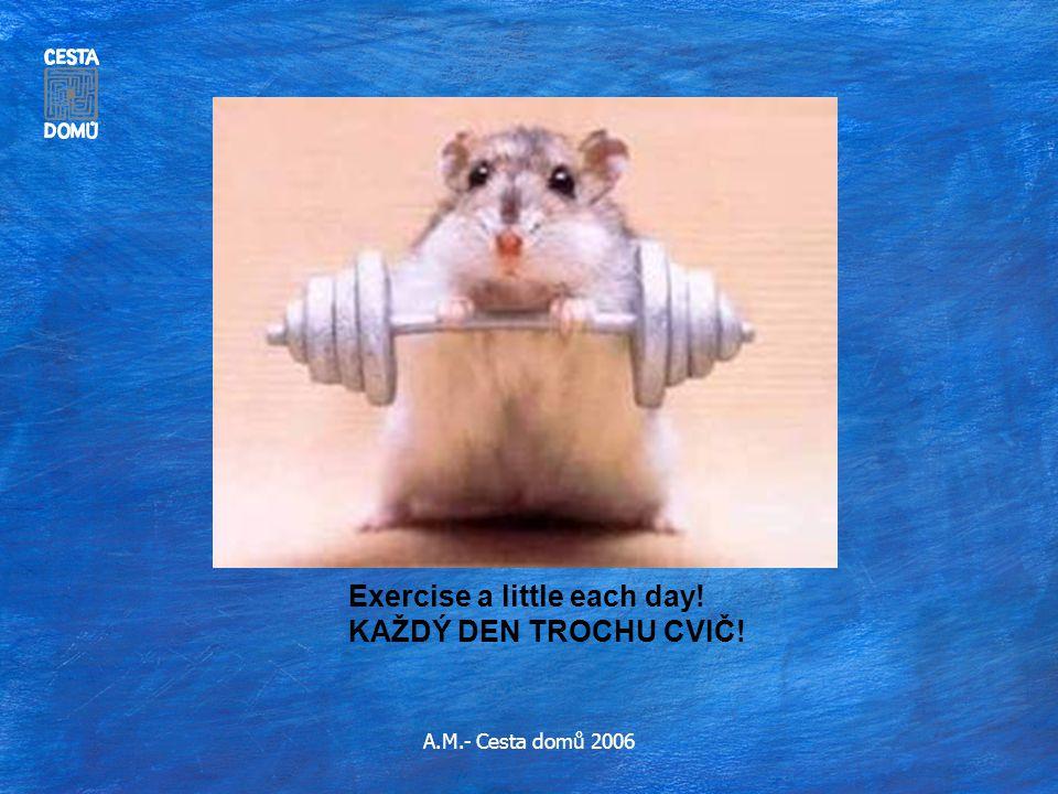 A.M.- Cesta domů 2006 Exercise a little each day! KAŽDÝ DEN TROCHU CVIČ!