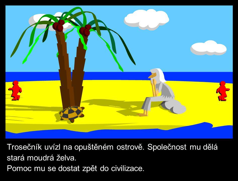 Trosečník uvízl na opuštěném ostrově. Společnost mu dělá stará moudrá želva.