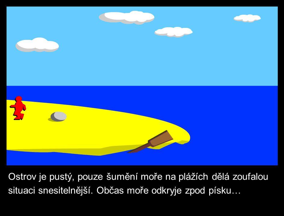 Ostrov je pustý, pouze šumění moře na plážích dělá zoufalou situaci snesitelnější.