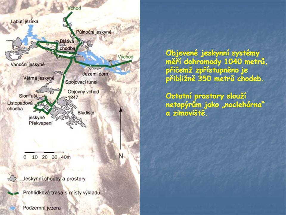 Jeskyně byly náhodně objeveny při těžbě dolomitu v roce 1947 při odstřelu v malém dolomitovém lomu. V roce 1957 se třem místním občanům J.Kurfiřtovi,