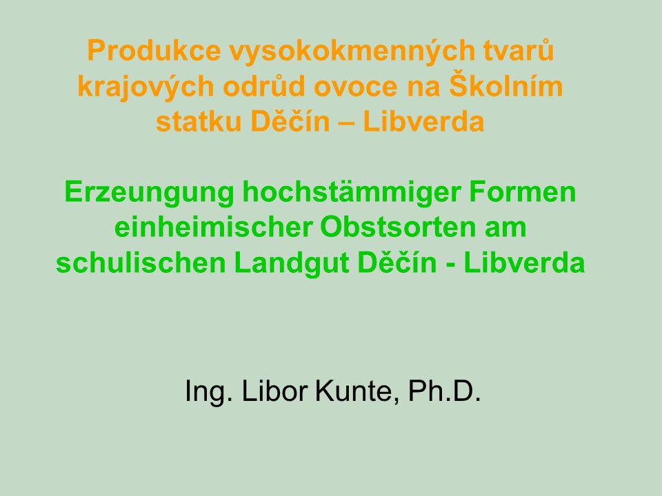Produkce vysokokmenných tvarů krajových odrůd ovoce na Školním statku Děčín – Libverda Erzeungung hochstämmiger Formen einheimischer Obstsorten am sch