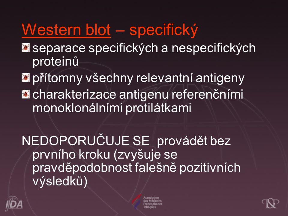 Western blot – specifický separace specifických a nespecifických proteinů přítomny všechny relevantní antigeny charakterizace antigenu referenčními mo