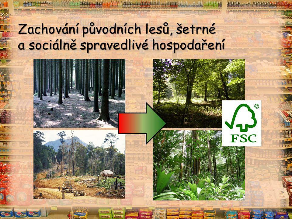 Zachování původních lesů, šetrné a sociálně spravedlivé hospodaření