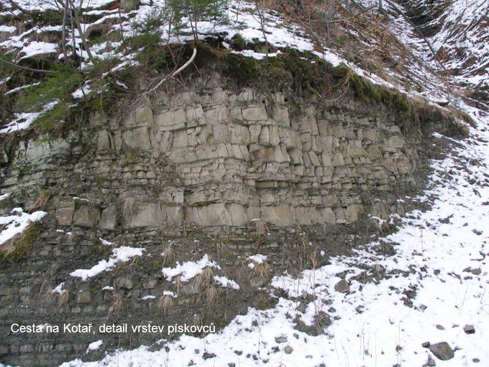 Komorní Lhotka, řeka Stonávka