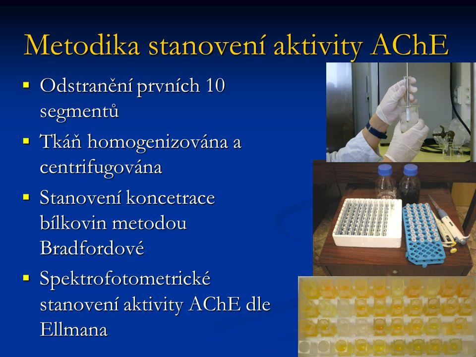Metodika stanovení aktivity AChE  Odstranění prvních 10 segmentů  Tkáň homogenizována a centrifugována  Stanovení koncetrace bílkovin metodou Bradfordové  Spektrofotometrické stanovení aktivity AChE dle Ellmana
