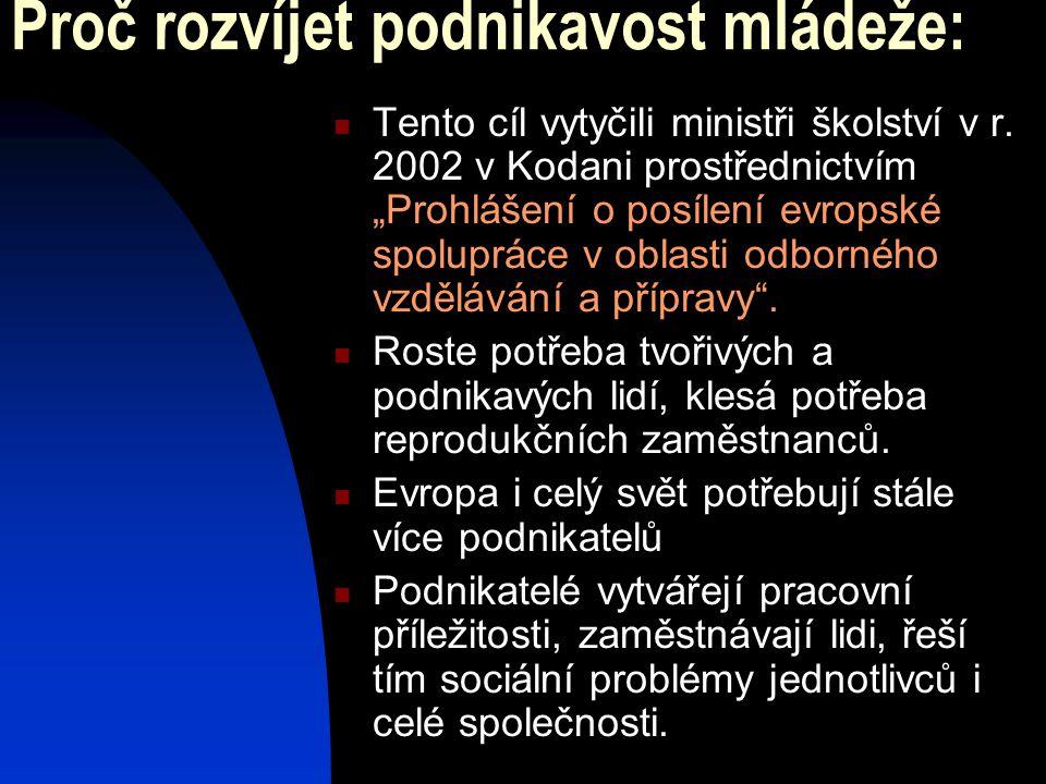 """Proč rozvíjet podnikavost mládeže:  Tento cíl vytyčili ministři školství v r. 2002 v Kodani prostřednictvím """"Prohlášení o posílení evropské spoluprác"""