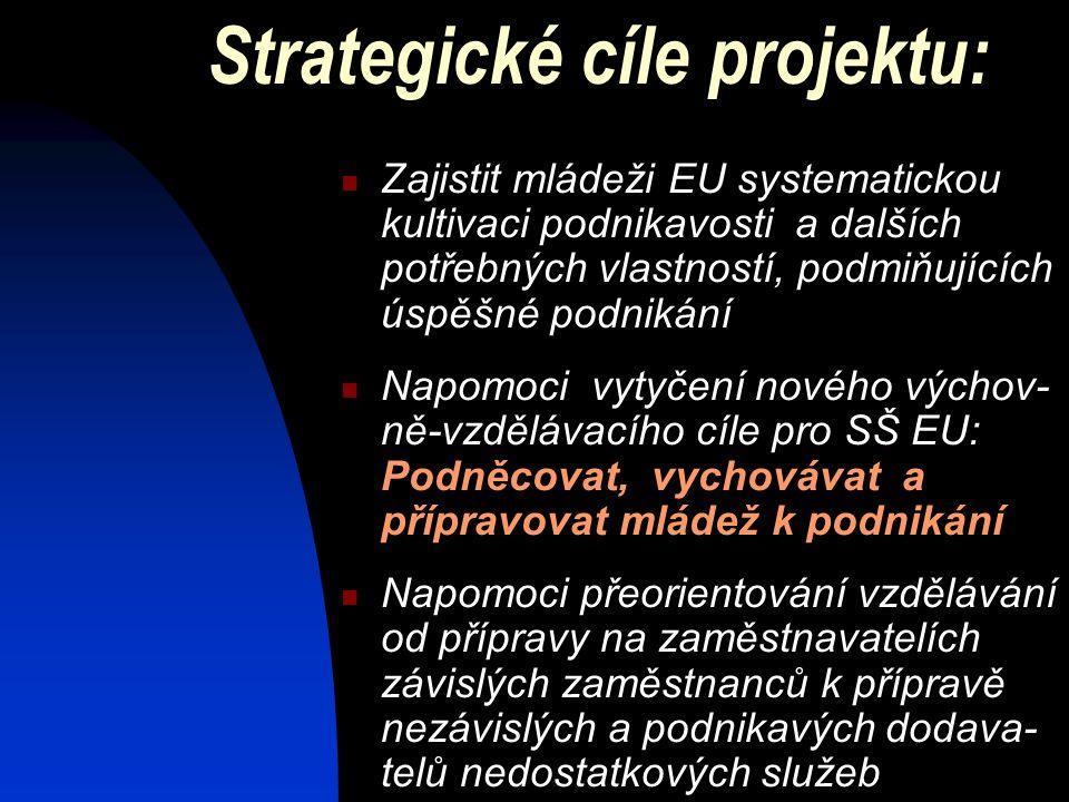Strategické cíle projektu:  Zajistit mládeži EU systematickou kultivaci podnikavosti a dalších potřebných vlastností, podmiňujících úspěšné podnikání