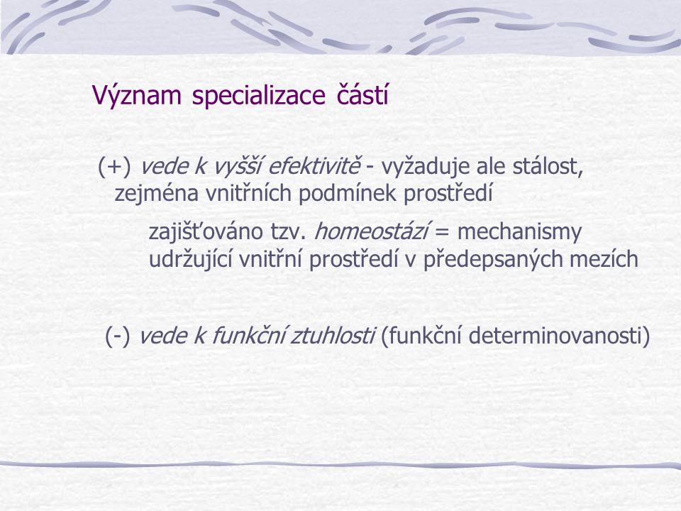 Význam specializace částí (+) vede k vyšší efektivitě - vyžaduje ale stálost, zejména vnitřních podmínek prostředí zajišťováno tzv. homeostází = mecha