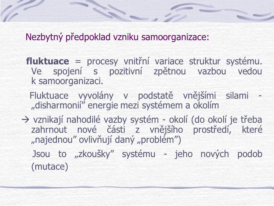 Nezbytný předpoklad vzniku samoorganizace: fluktuace = procesy vnitřní variace struktur systému. Ve spojení s pozitivní zpětnou vazbou vedou k samoorg