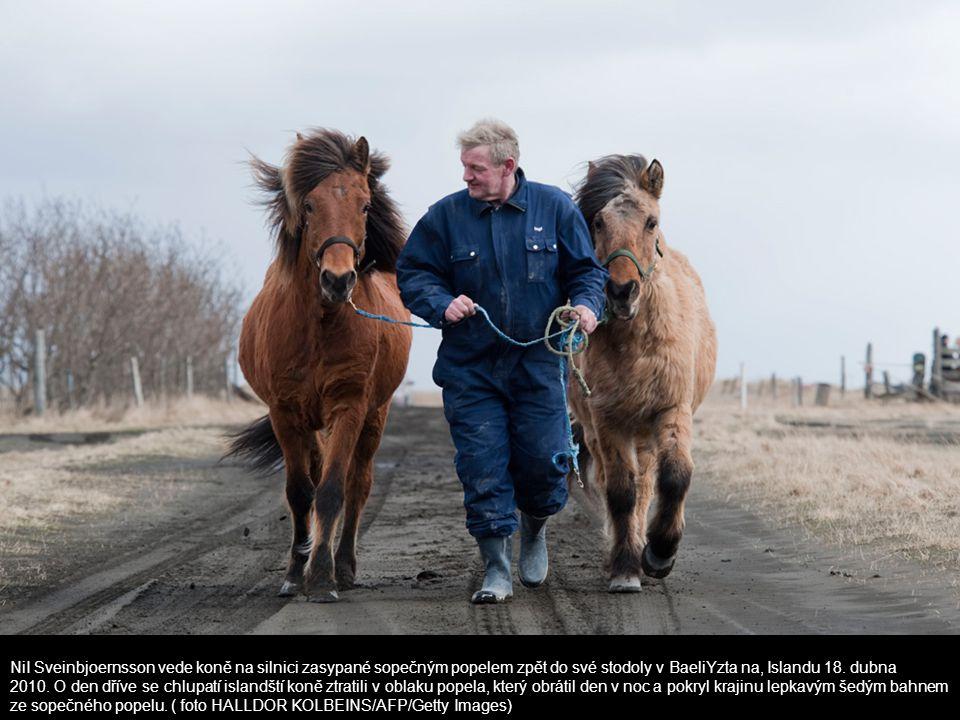 NiI Sveinbjoernsson vede koně na silnici zasypané sopečným popelem zpět do své stodoly v BaeliYzta na, Islandu 18. dubna 2010. O den dříve se chlupatí