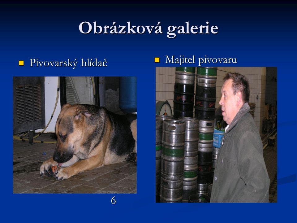 Obrázková galerie  Pivovarský hlídač 6  Majitel pivovaru