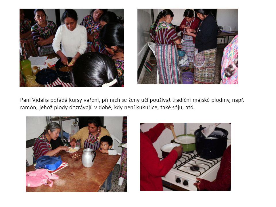 Paní Vidalia pořádá kursy vaření, při nich se ženy učí používat tradiční májské plodiny, např. ramón, jehož plody dozrávají v době, kdy není kukuřice,