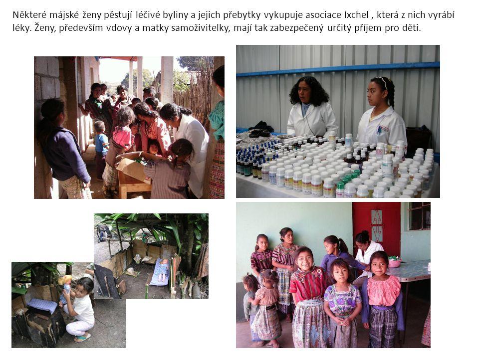 Některé májské ženy pěstují léčivé byliny a jejich přebytky vykupuje asociace Ixchel, která z nich vyrábí léky. Ženy, především vdovy a matky samoživi