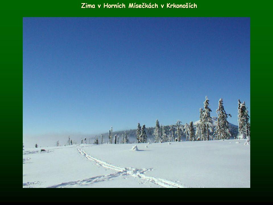Zima v Horních Mísečkách v Krkonoších