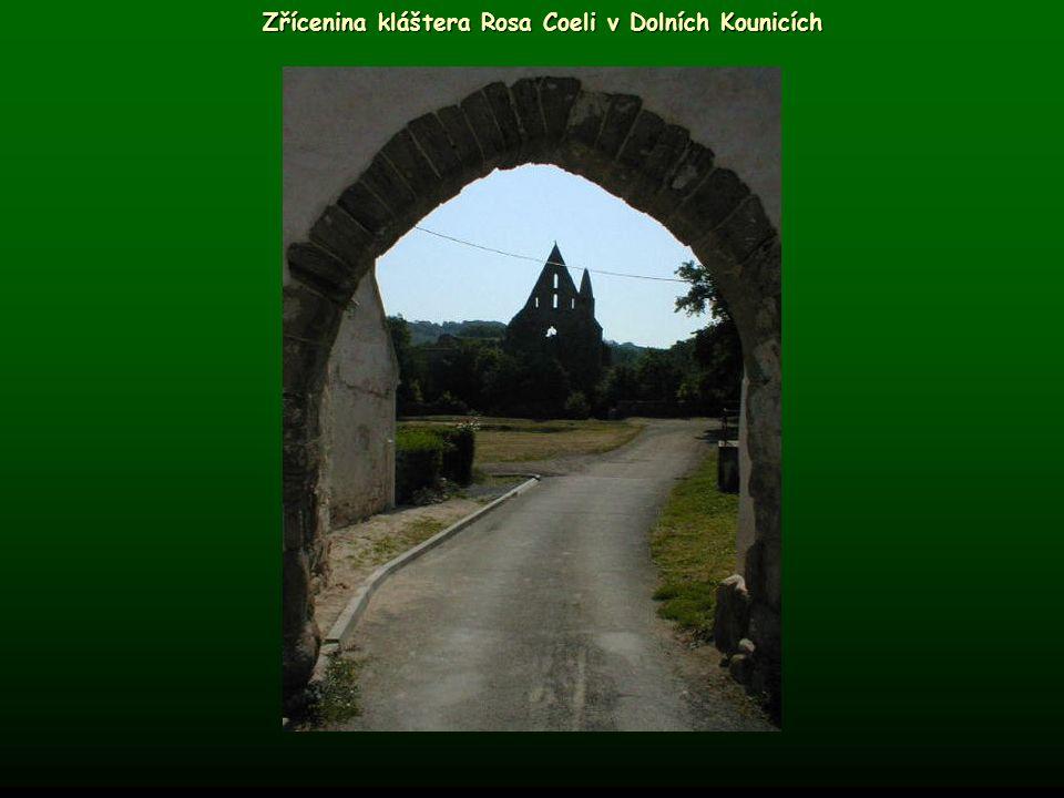 Zřícenina kláštera Rosa Coeli v Dolních Kounicích