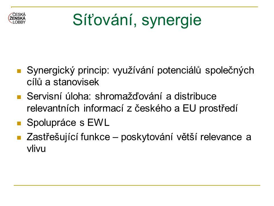 Síťování, synergie  Synergický princip: využívání potenciálů společných cílů a stanovisek  Servisní úloha: shromažďování a distribuce relevantních i