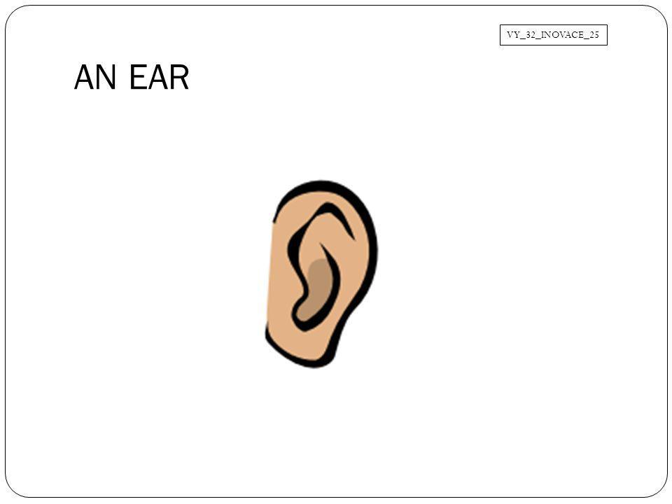 VY_32_INOVACE_25 AN EAR