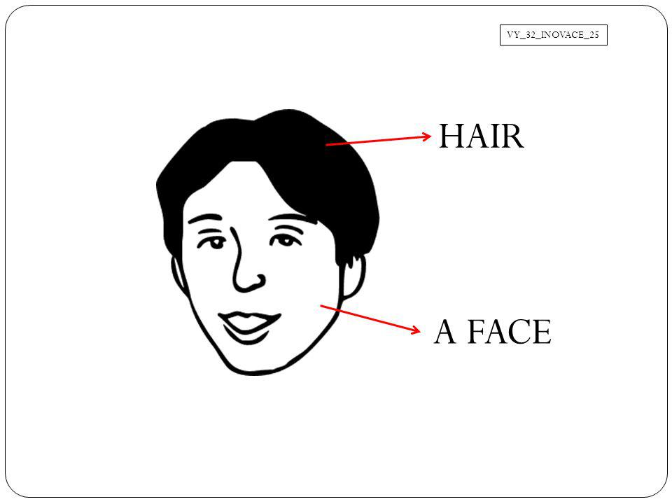 VY_32_INOVACE_25 HAIR A FACE