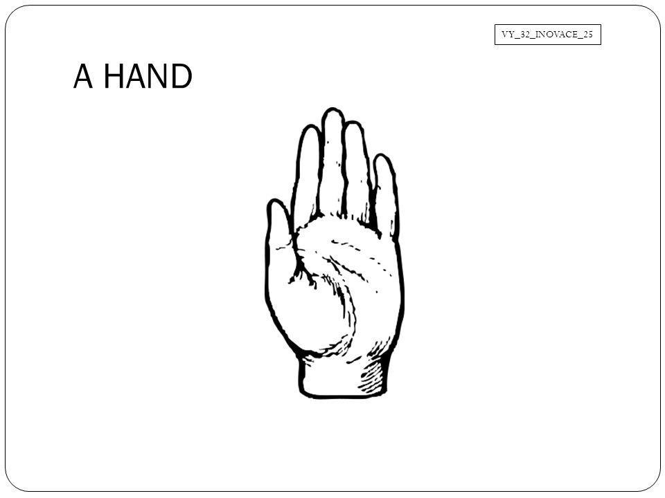 VY_32_INOVACE_25 A HAND