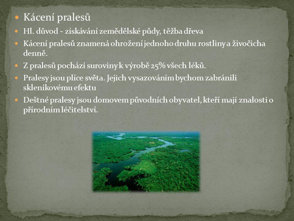  Kácení pralesů  Hl.