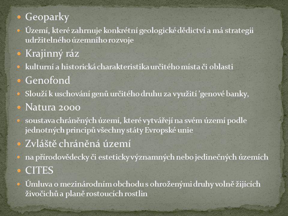  Geoparky  Území, které zahrnuje konkrétní geologické dědictví a má strategii udržitelného územního rozvoje  Krajinný ráz  kulturní a historická charakteristika určitého místa či oblasti  Genofond  Slouží k uschování genů určitého druhu za využití genové banky'  Natura 2000  soustava chráněných území, které vytvářejí na svém území podle jednotných principů všechny státy Evropské unie  Zvláště chráněná území  na přírodovědecky či esteticky významných nebo jedinečných územích  CITES  Úmluva o mezinárodním obchodu s ohroženými druhy volně žijících živočichů a planě rostoucích rostlin