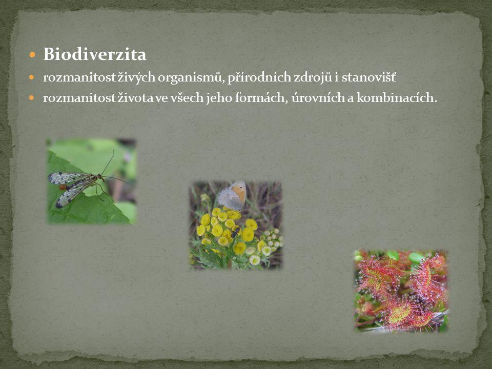  Biodiverzita  rozmanitost živých organismů, přírodních zdrojů i stanovišť  rozmanitost života ve všech jeho formách, úrovních a kombinacích.