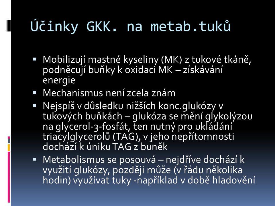 Účinky GKK. na metab.tuků  Mobilizují mastné kyseliny (MK) z tukové tkáně, podněcují buňky k oxidaci MK – získávání energie  Mechanismus není zcela