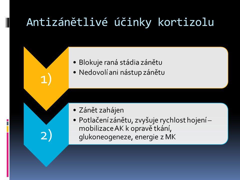 Antizánětlivé účinky kortizolu 1) •Blokuje raná stádia zánětu •Nedovolí ani nástup zánětu 2) •Zánět zahájen •Potlačení zánětu, zvyšuje rychlost hojení