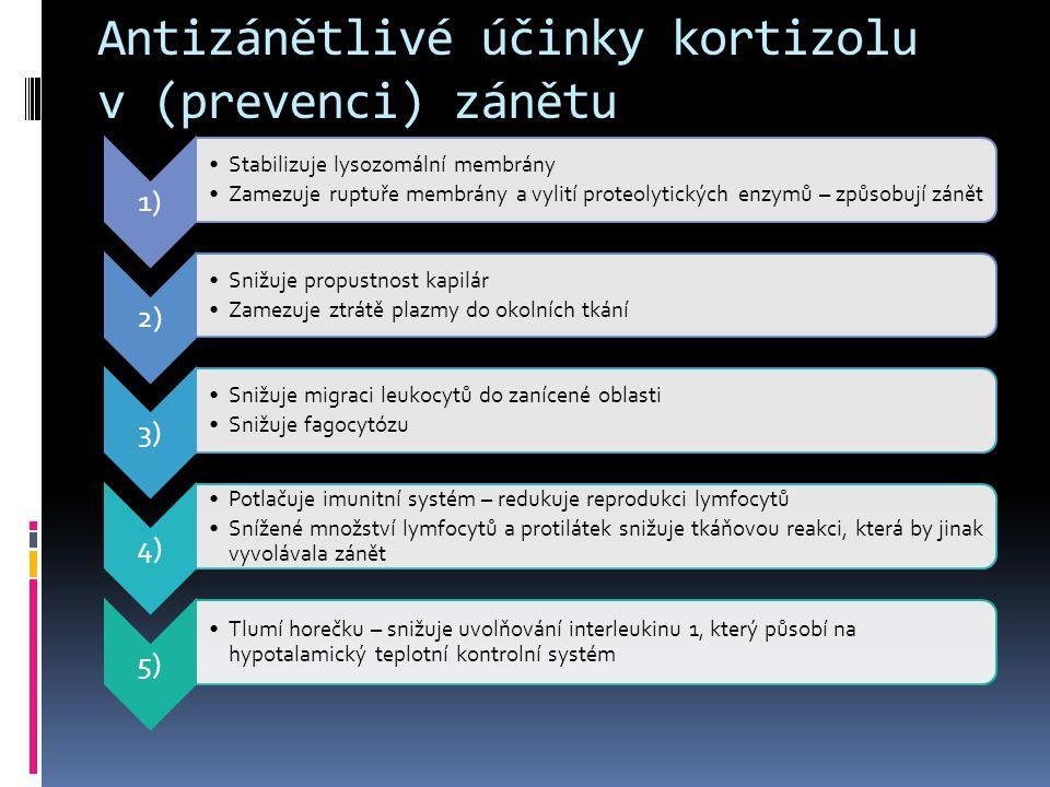 Antizánětlivé účinky kortizolu v (prevenci) zánětu 1) •Stabilizuje lysozomální membrány •Zamezuje ruptuře membrány a vylití proteolytických enzymů – z