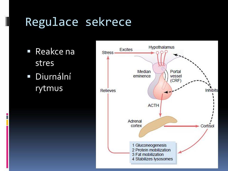 Regulace sekrece  Reakce na stres  Diurnální rytmus