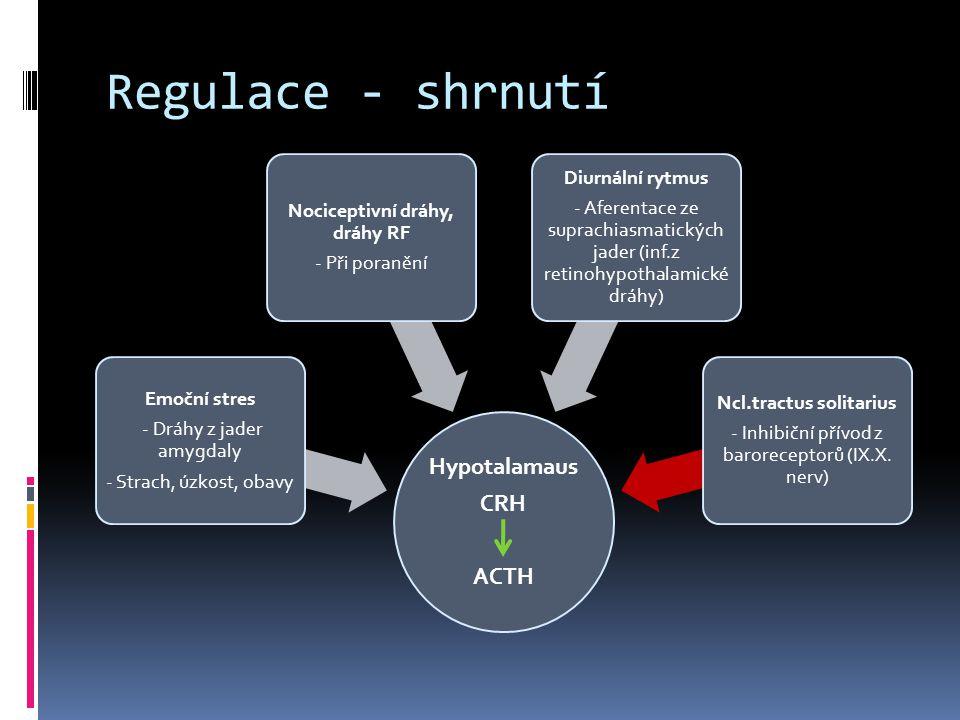Regulace - shrnutí Hypotalamaus CRH ACTH Emoční stres - Dráhy z jader amygdaly - Strach, úzkost, obavy Nociceptivní dráhy, dráhy RF - Při poranění Diu