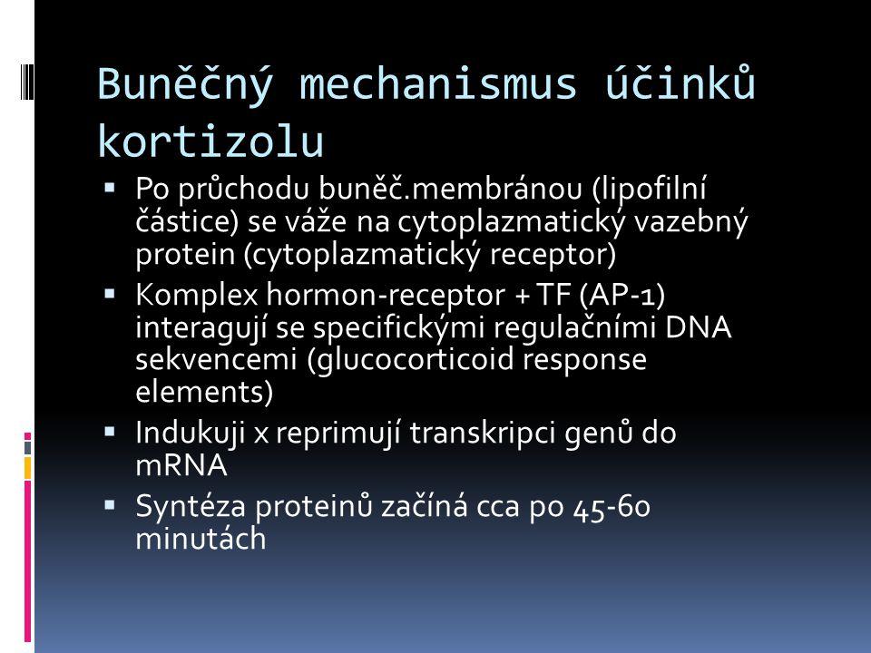 Účinky glukokortikoidů  Na metabolismus sacharidů  Proteinů  Tuků  Rezistence vůči stresu  Permisivní působení  Vaskulární reaktivita  Účinky na nervový systém  Na metabolismus vody  Antizánětlivé účinky