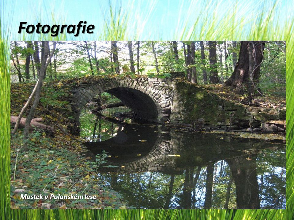 Fotografie Mostek v Polanském lese