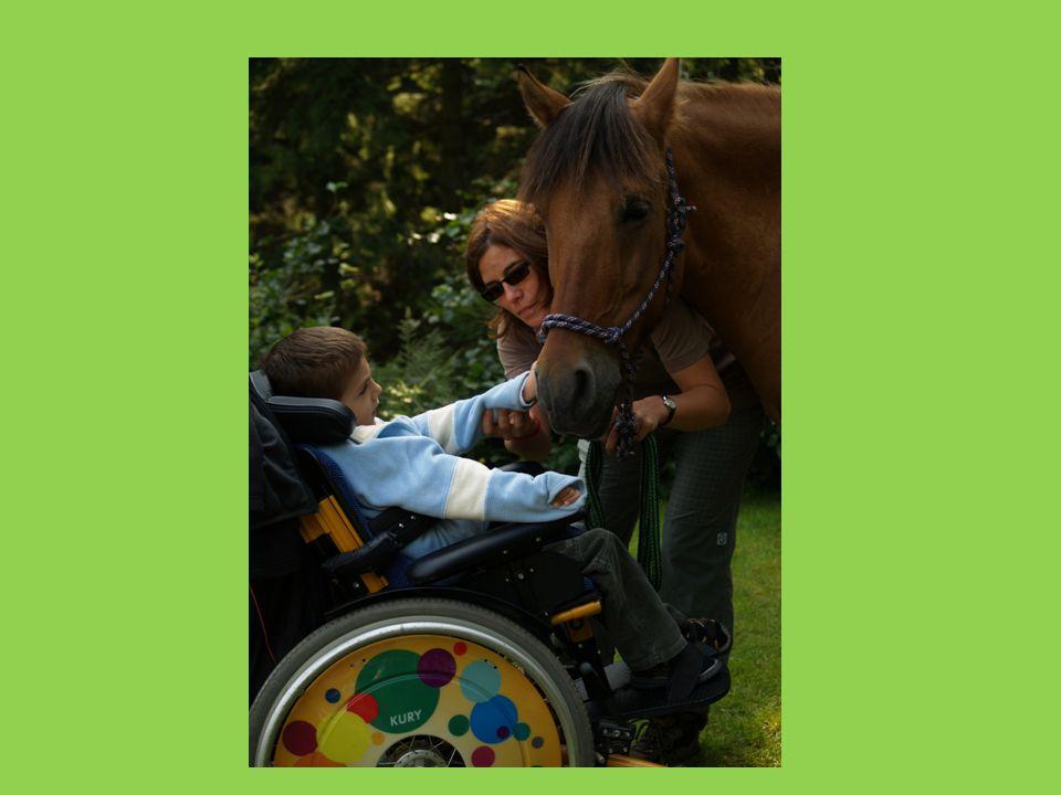 • Nemocnému dítěti dává možnost zažít prostřednictvím koně pohyb zdravého člověka.