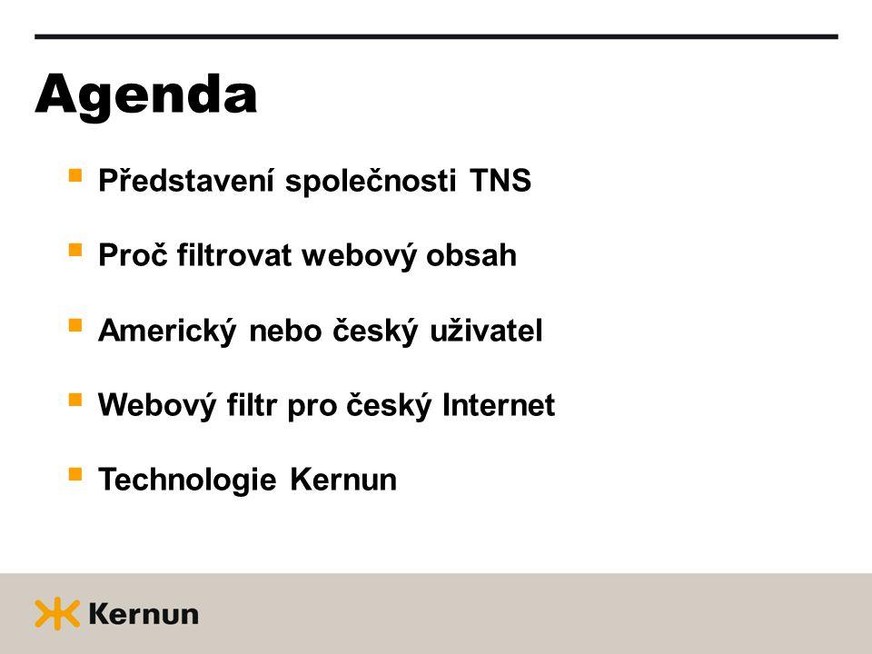 Agenda  Představení společnosti TNS  Proč filtrovat webový obsah  Americký nebo český uživatel  Webový filtr pro český Internet  Technologie Kern