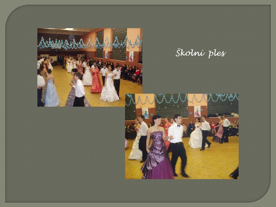 Školní ples