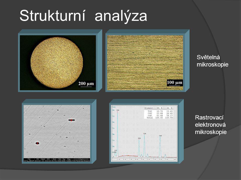 Strukturní analýza Rastrovací elektronová mikroskopie Světelná mikroskopie