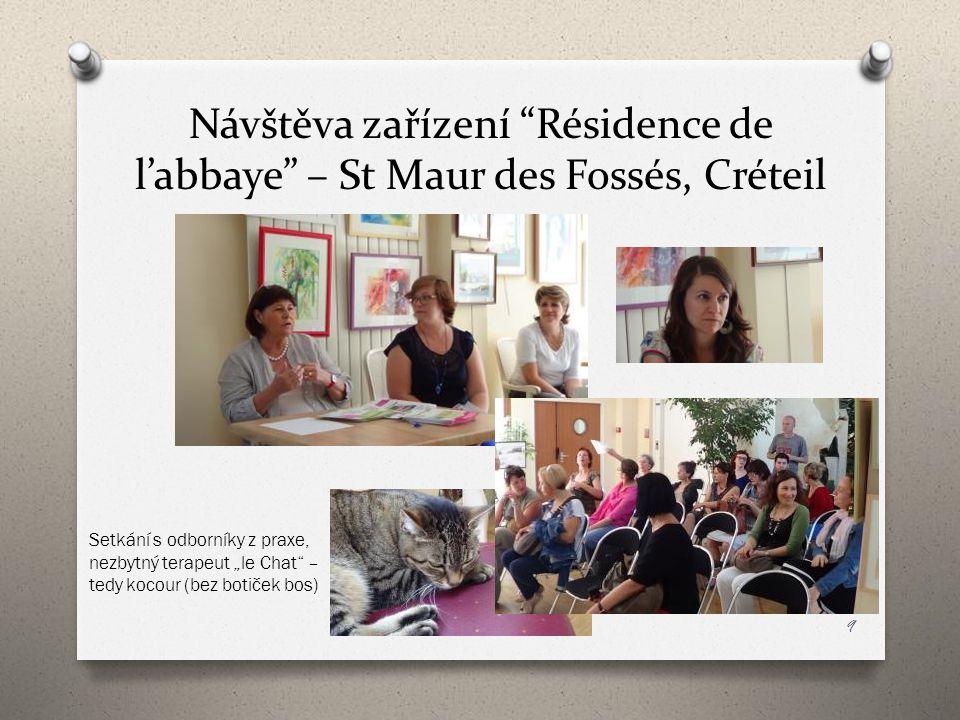 """Návštěva zařízení """"Résidence de l'abbaye"""" – St Maur des Fossés, Créteil 9 Setkání s odborníky z praxe, nezbytný terapeut """"le Chat"""" – tedy kocour (bez"""