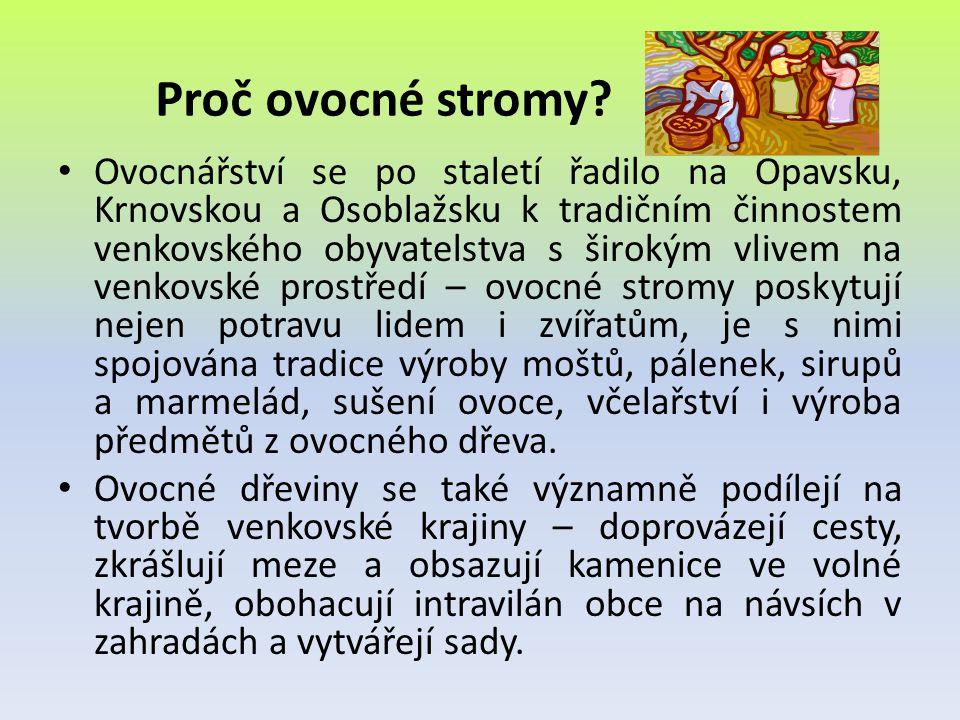 Proč ovocné stromy? • Ovocnářství se po staletí řadilo na Opavsku, Krnovskou a Osoblažsku k tradičním činnostem venkovského obyvatelstva s širokým vli