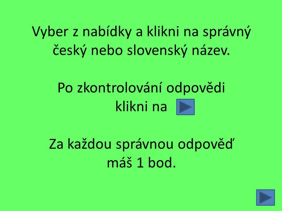 Vyber z nabídky a klikni na správný český nebo slovenský název. Po zkontrolování odpovědi klikni na Za každou správnou odpověď máš 1 bod.