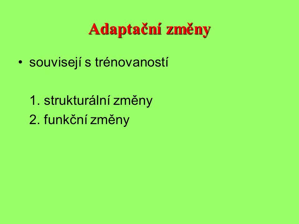 Adaptační změny •souvisejí s trénovaností 1. strukturální změny 2. funkční změny