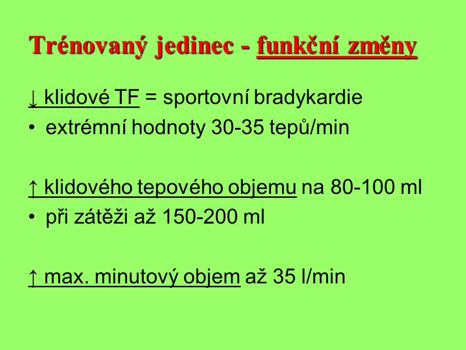 ↓ klidové TF = sportovní bradykardie •extrémní hodnoty 30-35 tepů/min ↑ klidového tepového objemu na 80-100 ml •při zátěži až 150-200 ml ↑ max.