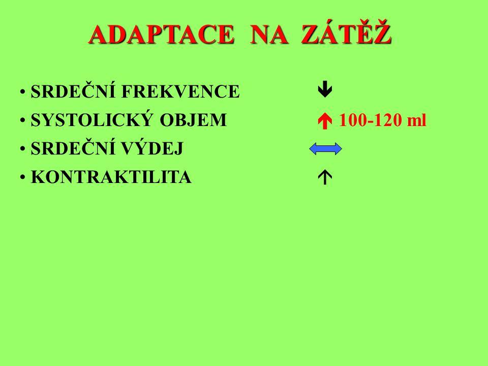 ADAPTACE NA ZÁTĚŽ • SRDEČNÍ FREKVENCE  • SYSTOLICKÝ OBJEM  100-120 ml • SRDEČNÍ VÝDEJ • KONTRAKTILITA 