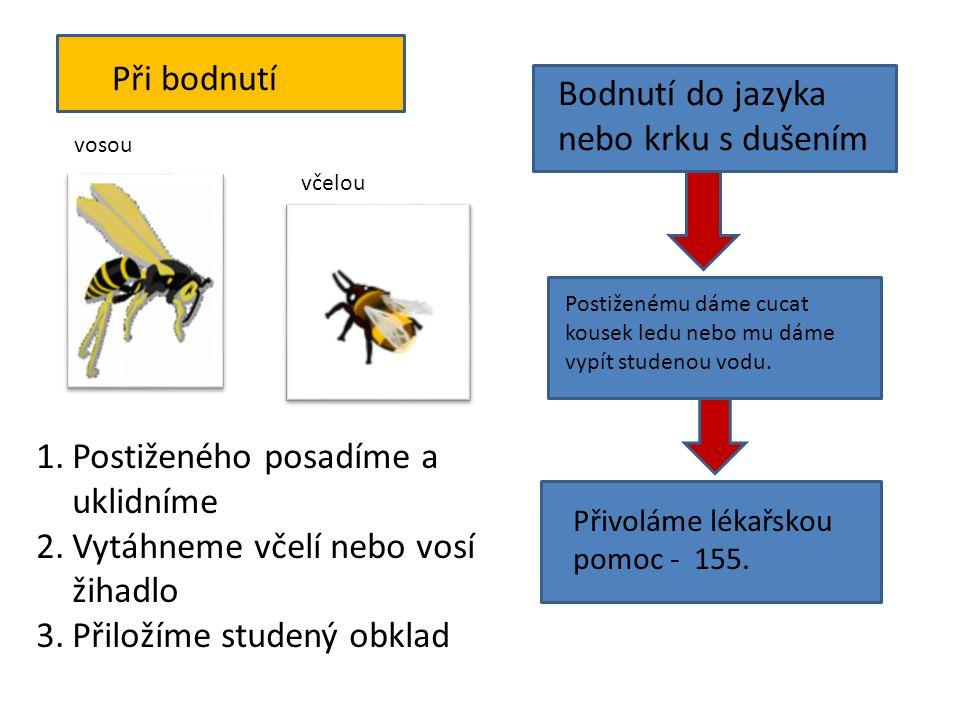 vosou včelou 1.Postiženého posadíme a uklidníme 2.Vytáhneme včelí nebo vosí žihadlo 3.Přiložíme studený obklad Bodnutí do jazyka nebo krku s dušením P