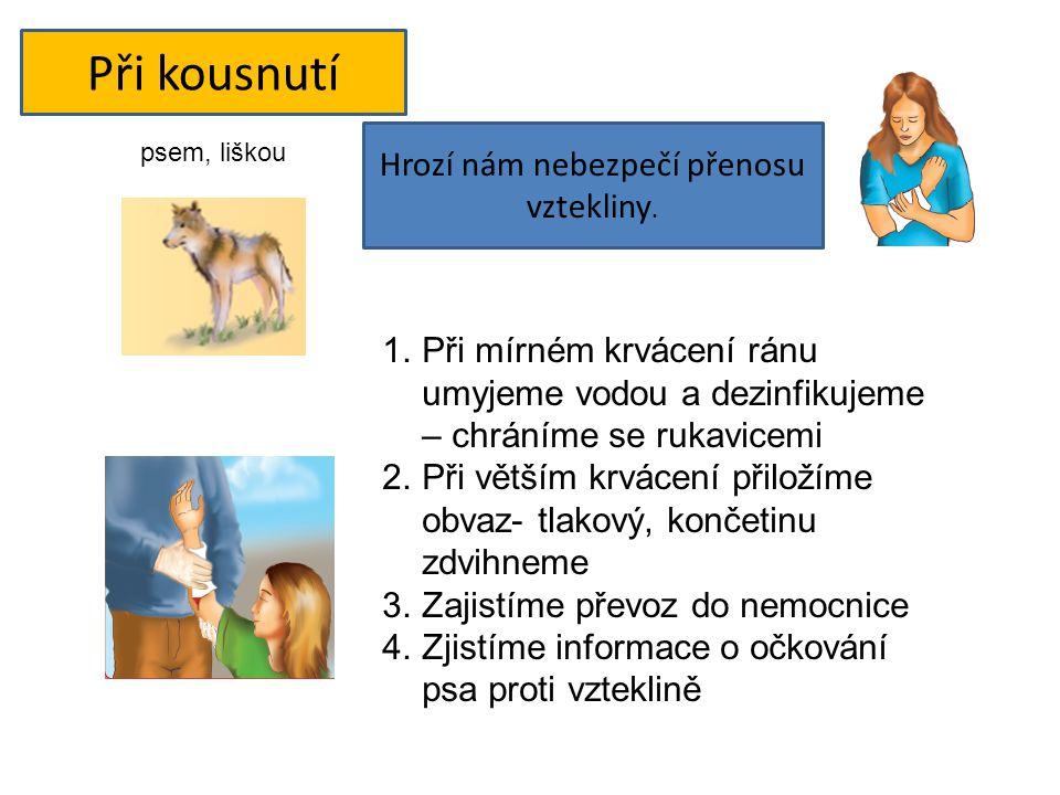 Při kousnutí psem, liškou Hrozí nám nebezpečí přenosu vztekliny. 1.Při mírném krvácení ránu umyjeme vodou a dezinfikujeme – chráníme se rukavicemi 2.P