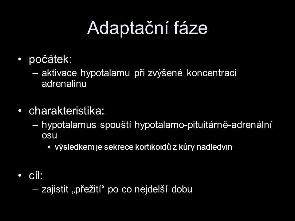 """Adaptační fáze •počátek: –aktivace hypotalamu při zvýšené koncentraci adrenalinu •charakteristika: –hypotalamus spouští hypotalamo-pituitárně-adrenální osu •výsledkem je sekrece kortikoidů z kůry nadledvin •cíl: –zajistit """"přežití po co nejdelší dobu"""